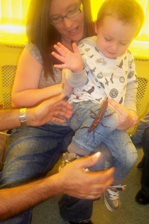 Animals in Hand 2