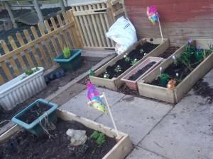 BKN garden 1